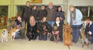 Zum vierten Male  der Schäferhundeverein der Ortsgruppe 23 (Dorsten-Wulfen) in Damm ein Agility-Turnier. Foto Scheffler