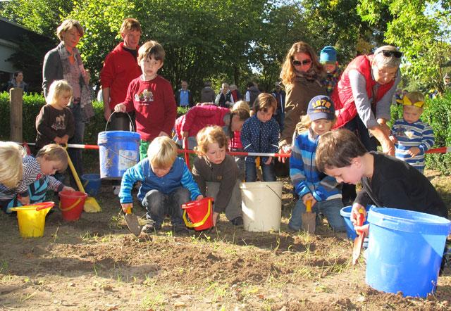 """Im Rahmen des Kartoffelfestes ernteten die Kinder der beiden Gruppen """"Ameisen"""" und """"Bienen"""" im Garten des Gahlener Kindergartens jene Kartoffeln, die man im Frühjahr gemeinsam angepflanzt hatte. Foto: Scheffler"""
