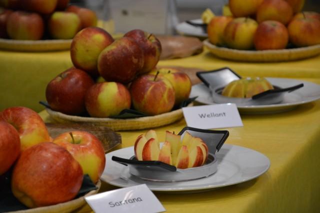 Apfelsorten_---_Sabine_Weis1