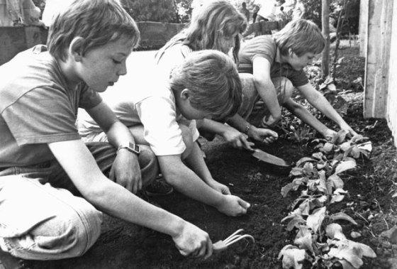 Juni-1988,-GGS,-Schulgarten