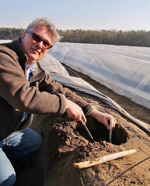 Spargelbauer Bernhard Böckenhoff ist mit der frühen Ernte auf seinen Feldern in Borken, dank Fußbodenheizung und milden Frühlingstagen, zufrieden