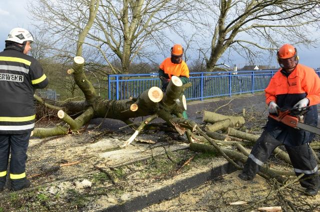 Sturm sorgt für viele Einsätze in Dorsten! Auch die B 224 war
