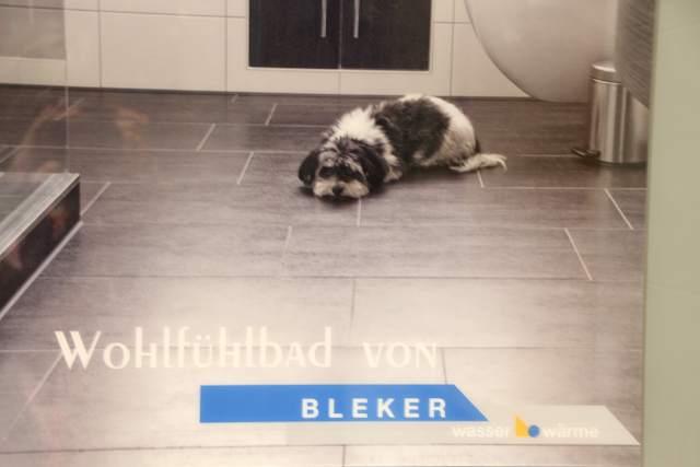 Bleker Raesfeld (28)