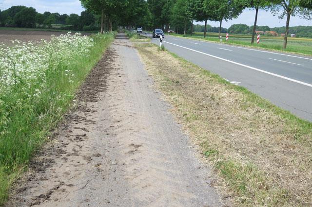 Autofahrer müsste man sein, dann hätte man eine saubere Fahrbahn im Schermbecker Ortsteil Bricht. Radler müssen sich die Fahrbahn jedoch mit Traktoren teilen, die zudem die Fahrbahn noch mächtig verschmutzen. Da fährt es sich nicht mehr ganz so gut. Foto: Helmut Scheffler, 21.5.2016