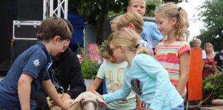 Schafsmarkt in Gahlen