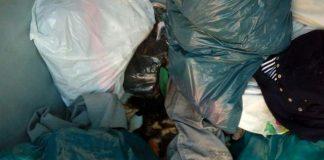 Verstorbene Katzen in wurden in einem Altkleidersammelbehälter in Mehrhoog gefunden