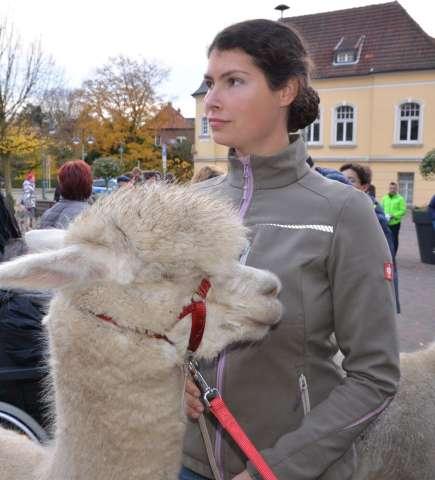 Keinen Herdenschutz für Alpakas in Schermbeck
