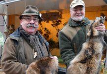 Fellwechsel Hegering Schermbeck Pelze von Waldtiere