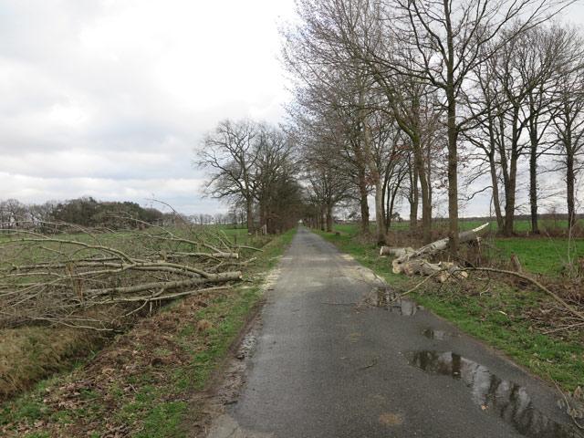 Sturm Eberhard raste auch über Damm
