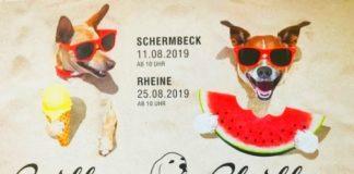 Hundeschule Loewenzahn
