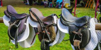 Trödelmarkt für Pferdefreunde Gahlen
