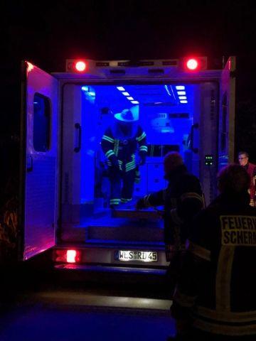 Hornissen im Rettungswagen Schermeck