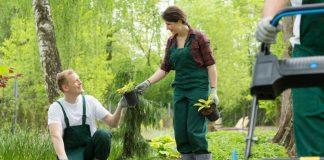 Soforthilfe für garten und landschaftsbau