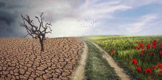 Klimaanpassung-Umwelt