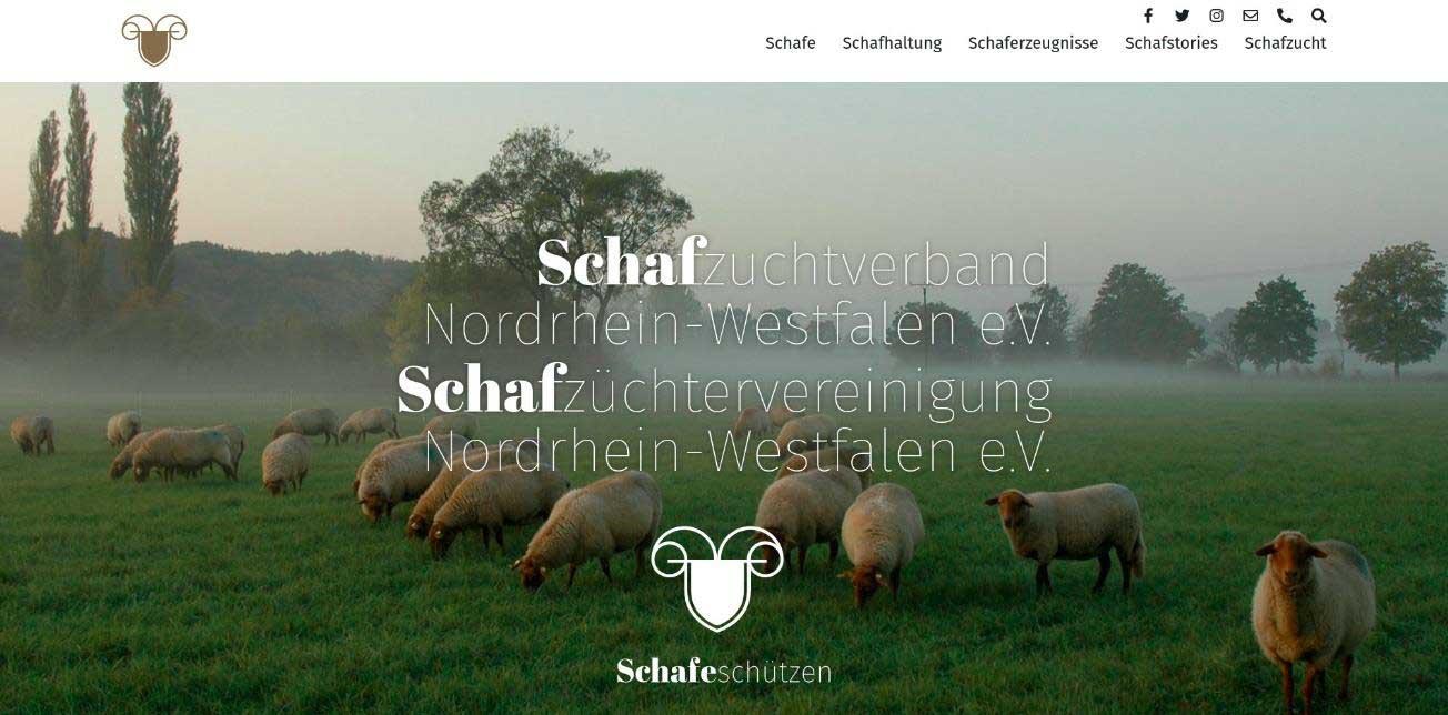 Schafe-schuetzen-nrw