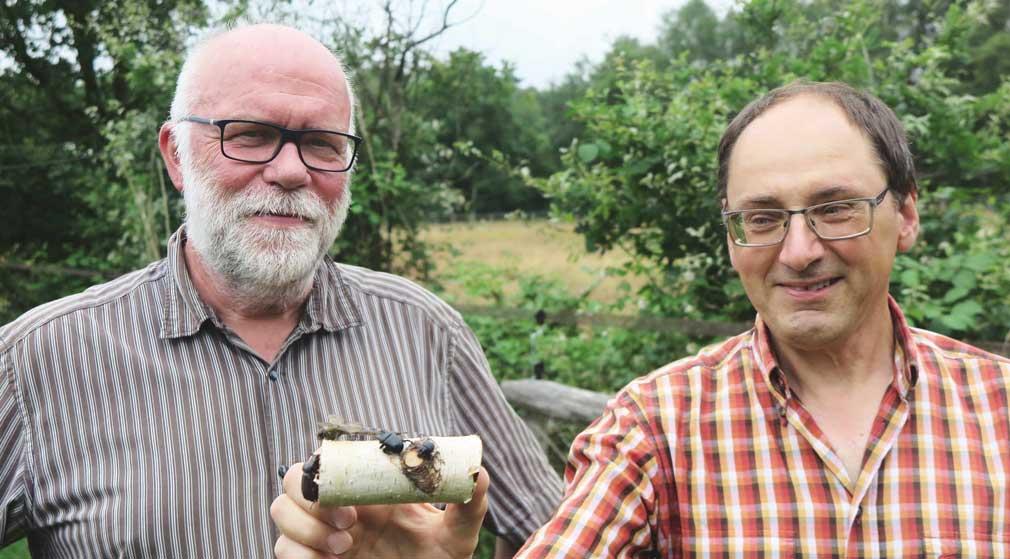 Insektenforscher Klaus Kretschmer
