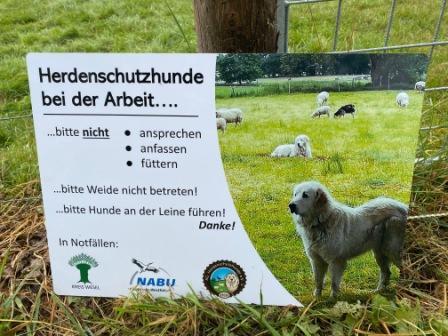 Wolfsgebiet Schermbeck herdenschutz Gahlen